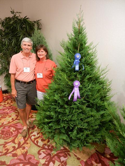 wadsworth christmas tree farm is the contest grand champion winner of the southern christmas tree associations annual tree contest - Christmas Tree Farm Louisiana